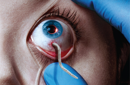 The Strain – Primeira Temporada